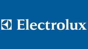 Запчасти для газовых котлов ELECTROLUX