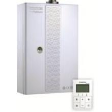 Газовый настенный котел CELTIC-DS, platinum 3.25FFCD